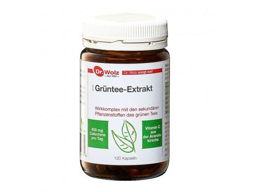 Grüntee-Extrakt Dr. Wolz N120