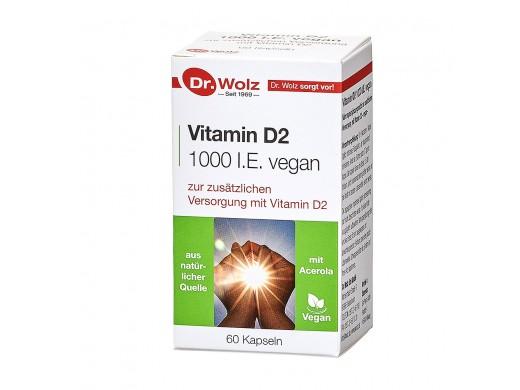 Vitamin D2 1000 I.E. vegan Dr. Wolz N60